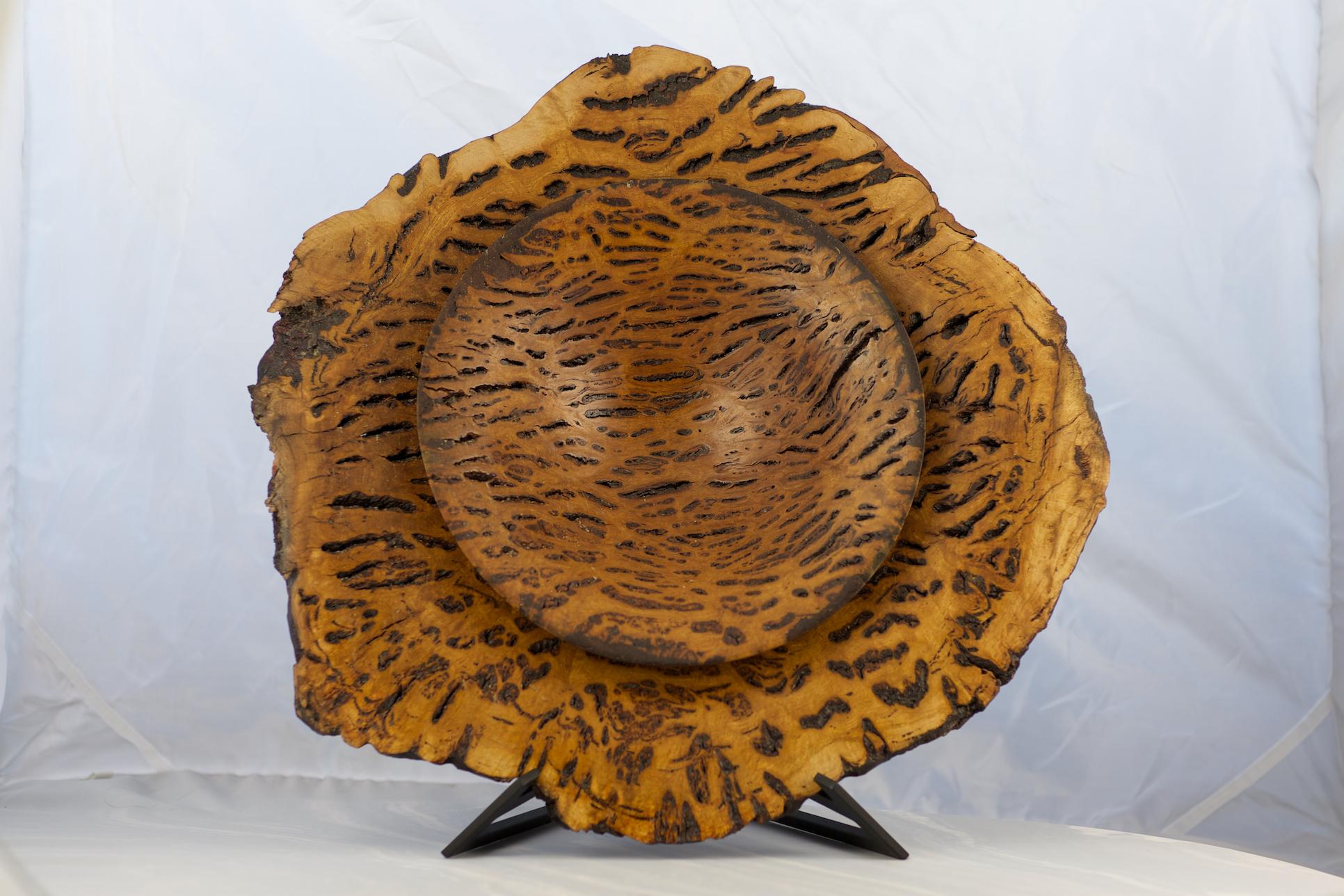 Wood1-1