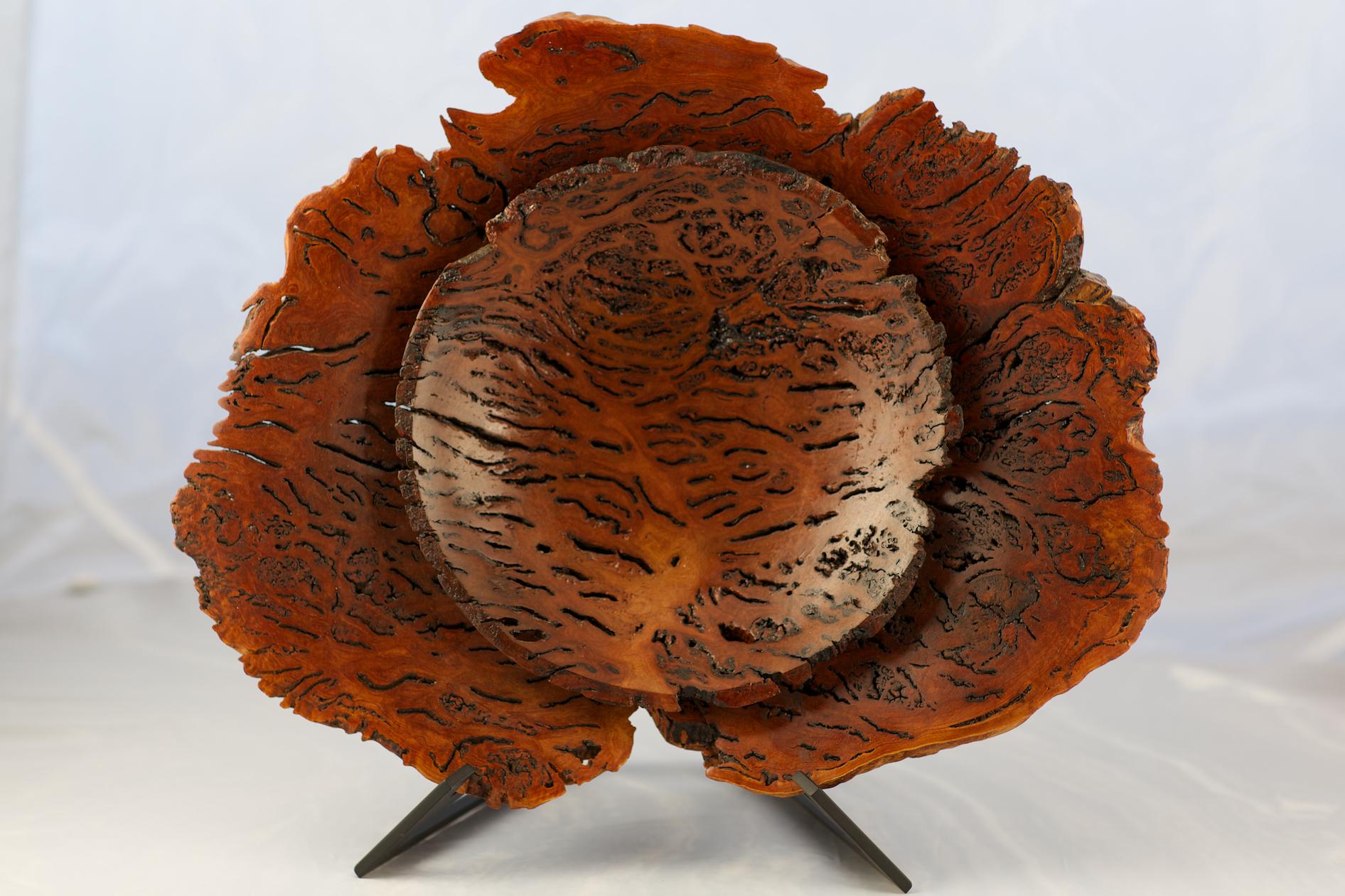 Wood2-5